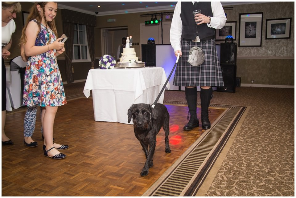Banchory Lodge Wedding Aberdeen Dog